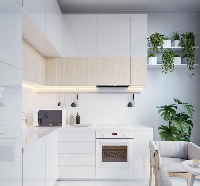 modele de cuisine blanche avec meuble bas blanc et meuble haut blanc et bois clair, credence blanche, plantes vertes sur une etagere