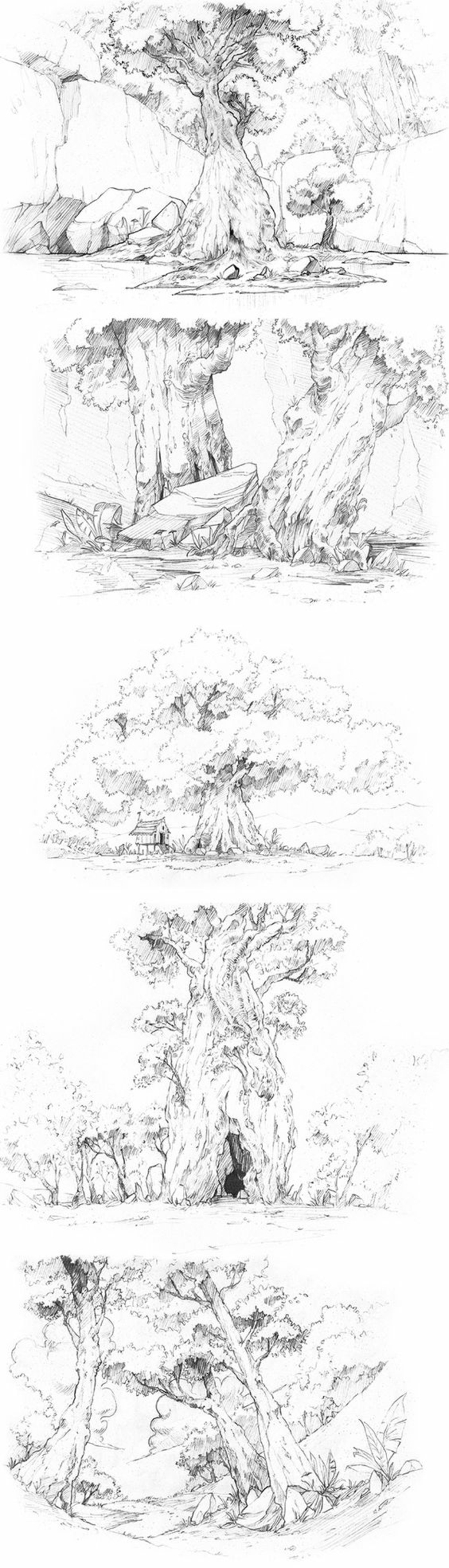 Branche d arbre dessin comment dessiner un arbre idée