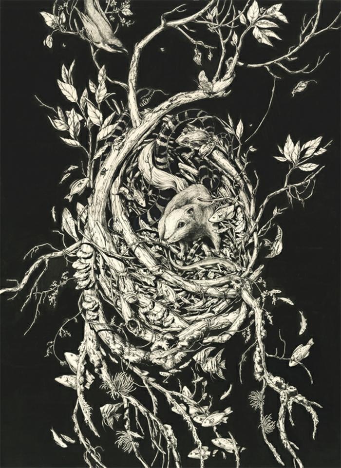 Dessin arbre printemps branche arbre dessin dessins d arbre blanches
