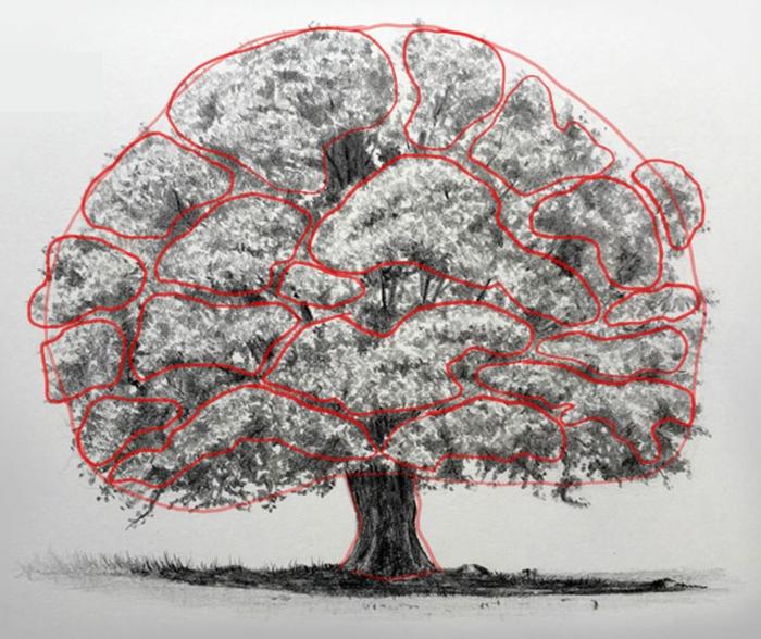 Les bases du dessin au crayon dessin arbre avec racines couronne d arbre comment dessiner