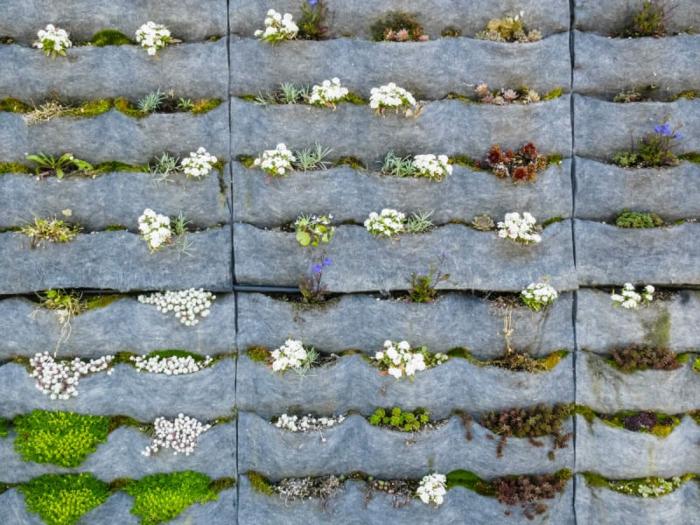 comment faire un mur végétal à partir de sac de plantation préfabriqué