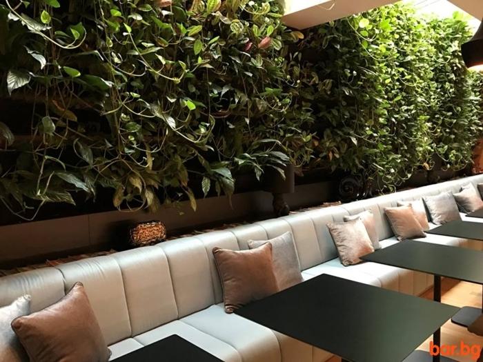 mur végétal intérieur, plantes vivantes cultivées verticalement, café avec tables noires et sofa taupe