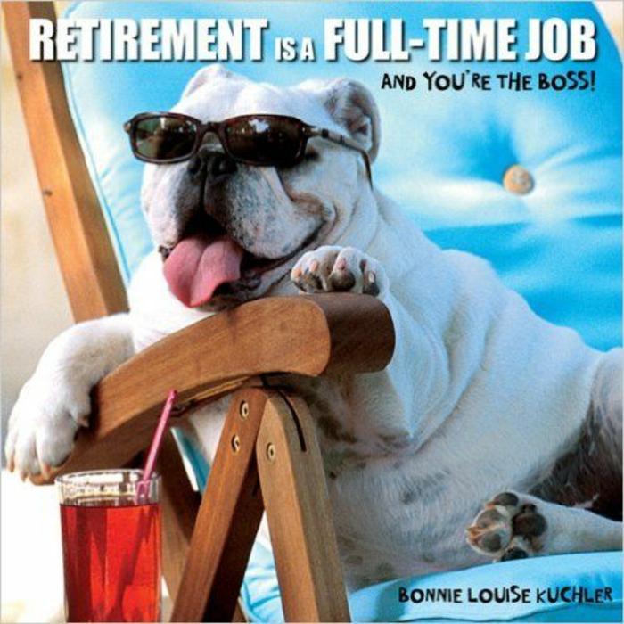 départ à la retraite, un toutou avec des lunettes de soleil sur sa chaise longue avec des coussinets en bleu turquoise, avec un cocktail en couleur rouge