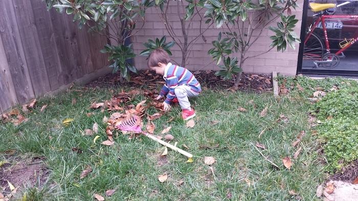 méthode montessori, apprendre à nettoyer un jardin, ramasser les feuilles mortes, activité manuelle maternelle vie pratique