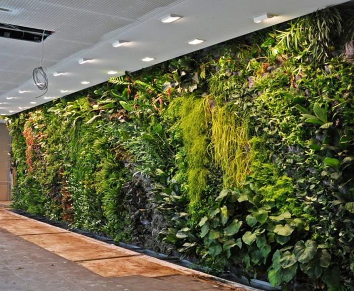 mur végétal intérieur dans un couloir, lampes au-dessus du jardin vertical