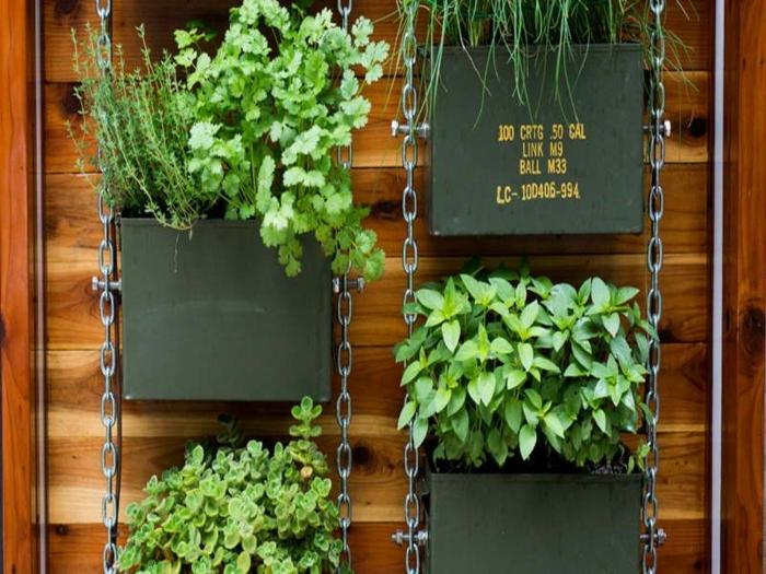 jardin vertical intérieur, design original, pots suspendus, végétalisation des offices et des logements modernes