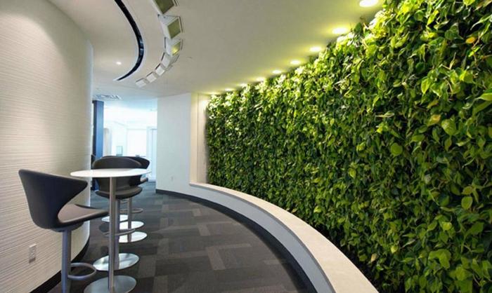 mur végétalisé intérieur, mur courbé avec éclairage original, jardin vertical