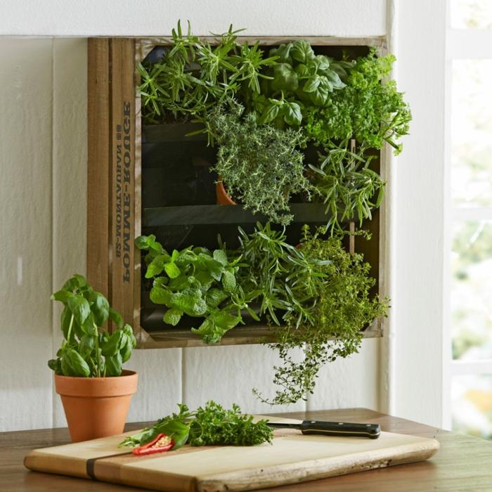 mur végétalisé intérieur en vieux caisson, pot de fleur avec herbe aromatique