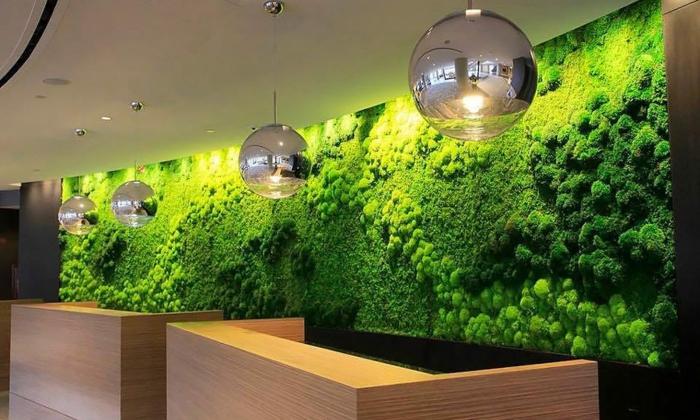 intérieur moderne avec un mur vegetal, lampes globes suspendus, offices modernes