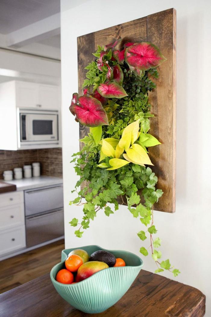 panneau en bois avec des plantes vivantes, idée dé déco originale dans la cuisine