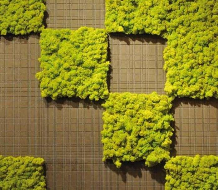 joli mur vegetal en mousse en forme de carrés collés au mur, décoration vivante