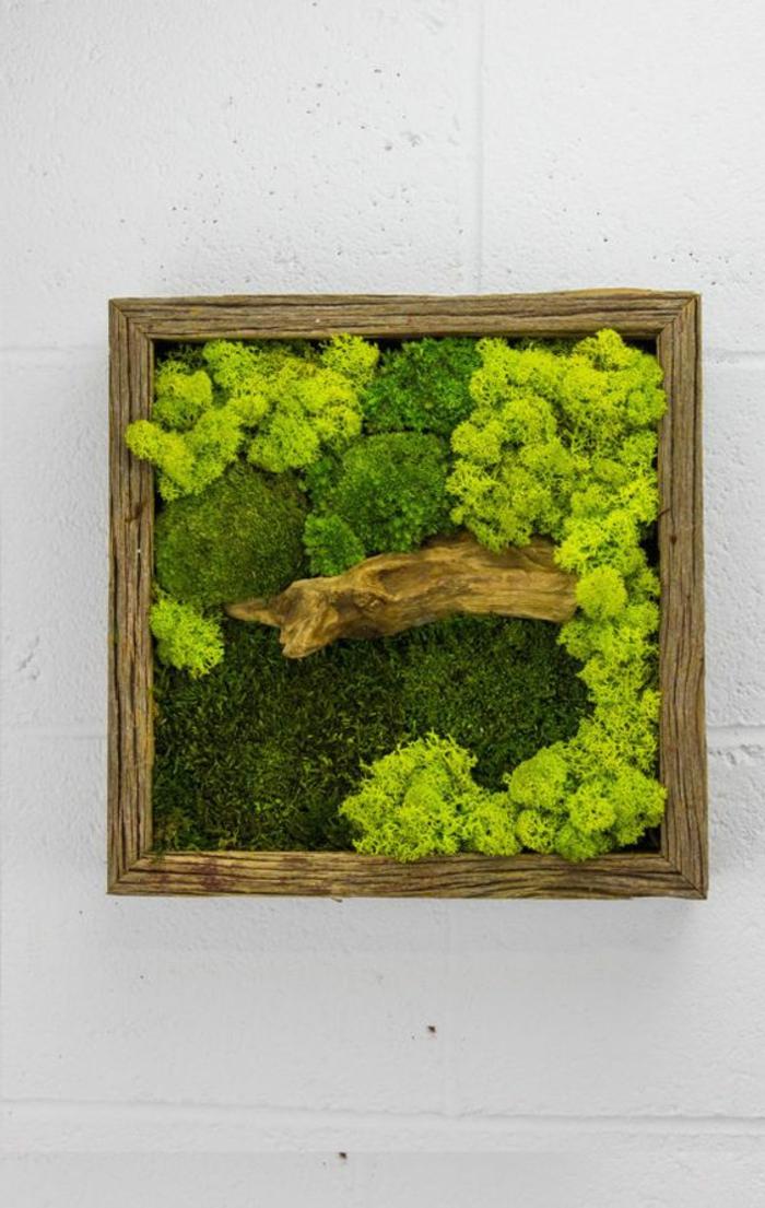 création de petit mur vegetal avec cadre en bois et mousses, idée déco peinture vivante
