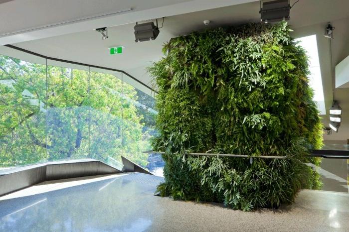 grande maison contemporaine, mur végétalisé intérieur, mur transparent