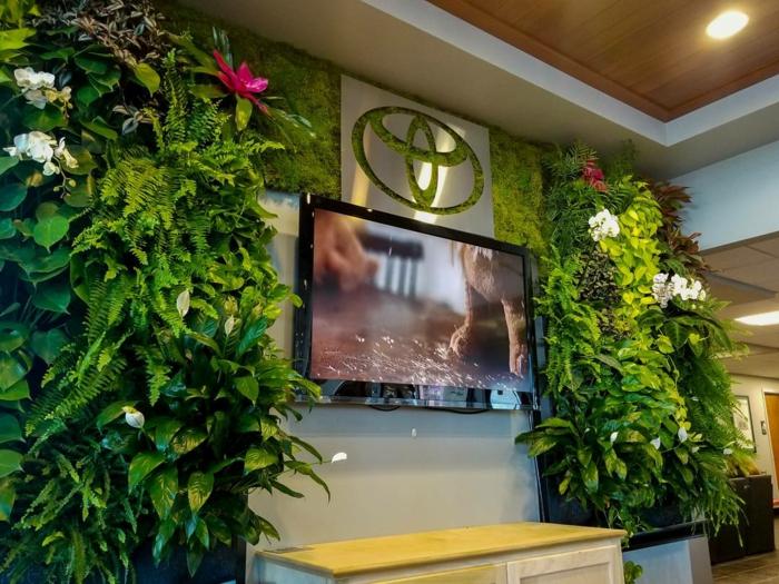 comment décorer son séjour avec des plantes vivantes, tv murale montée au mur