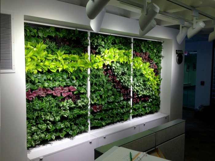 quel design de mur vegetal, éclairage artificiel, mur blanc avec des plantes