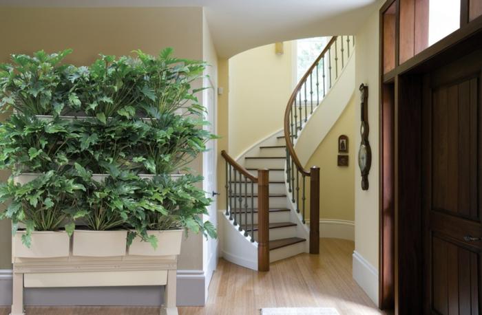 escalier tournant, jardinières disposées verticalement, maison en couleurs claires