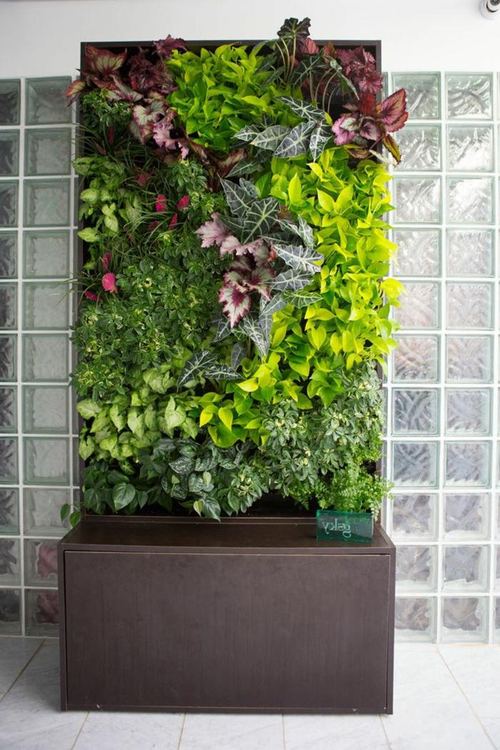un cadre avec des plantes vivantes, mur végétalisé préfabriqué, décoration pour l'intérieur