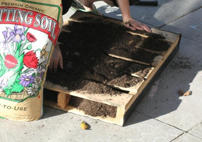construire son panneau végétal en palette, jardin miniature d'intérieur