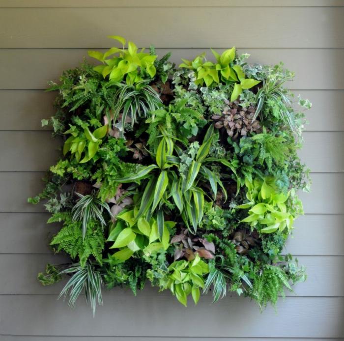 mur végétalisé, petit carré vert avec plantes vivantes, déco murale originale