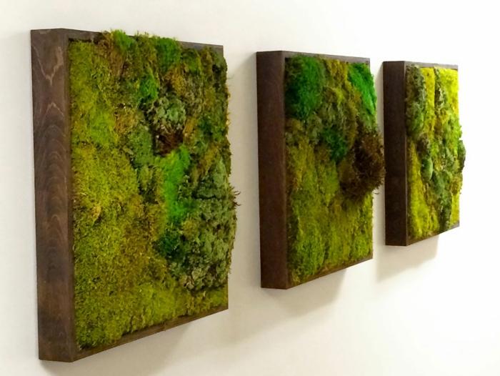 trois panneaux vivants avec de la mousse, créer des peintures vivantes et apporter des notes nature à l'intérieur