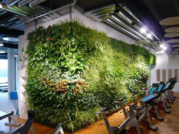 grand fitnesse avec un grand mur végétalisé, projets éco pour l'intérieur des bâtiments