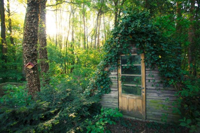 abri de jardin mignon qui a l'air miraculeux situé au sein de la verdure