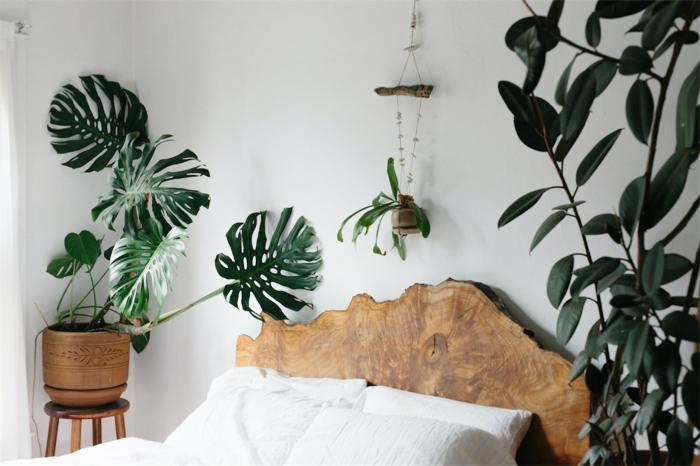 une véritable ambiance nature dans la chambre à coucher avec une tete de lit bois brut et une déco de plantes vertes