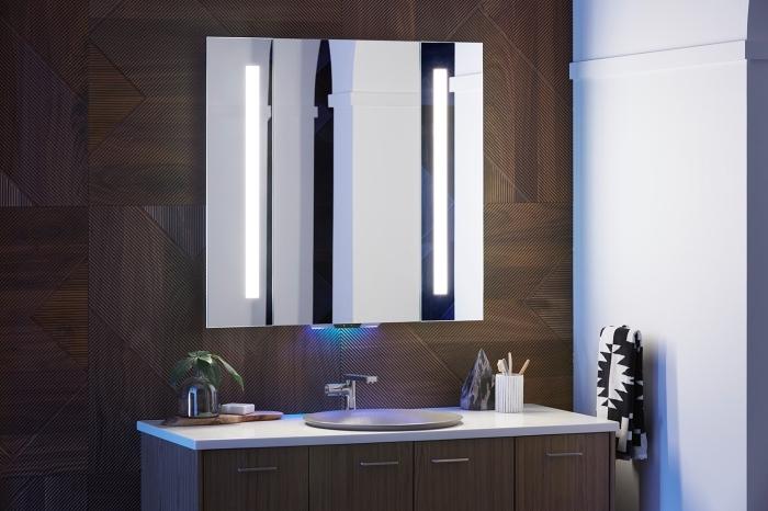 meuble de salle de bain en bois foncé avec poignées métalliques, modèle de grand miroir moderne sur mur en bois foncé