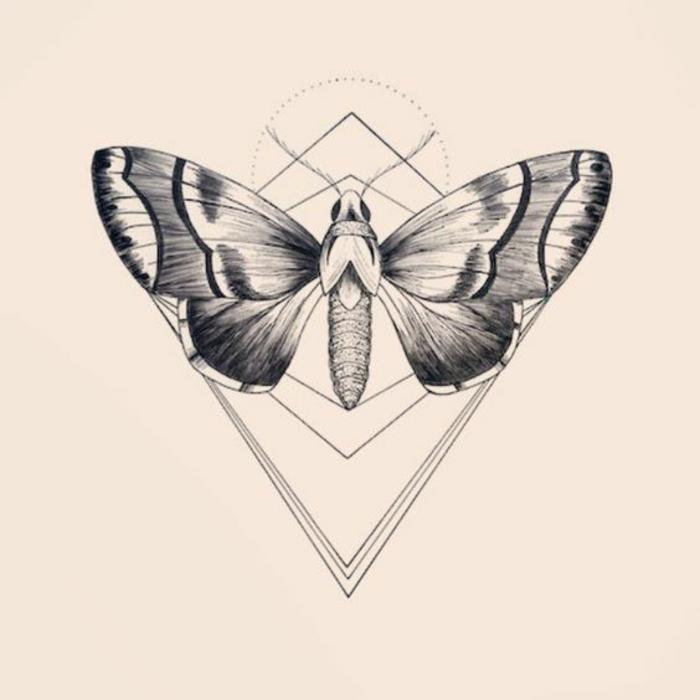 Photo de dessin géométrique avec explication dessiner papillon