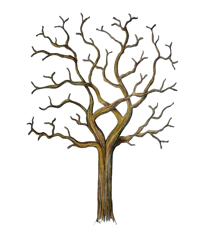 arbre à empreinte mariage, arbre a empreinte a telecharger gratuitement, modèle d'arbre vierge sans feuille pour un souvenir de mariage