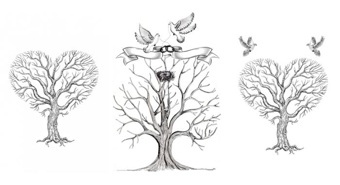 comment dessiner un arbre à empreinte vierge avec branches en forme de coeur et couple d'oiseaux amoureux