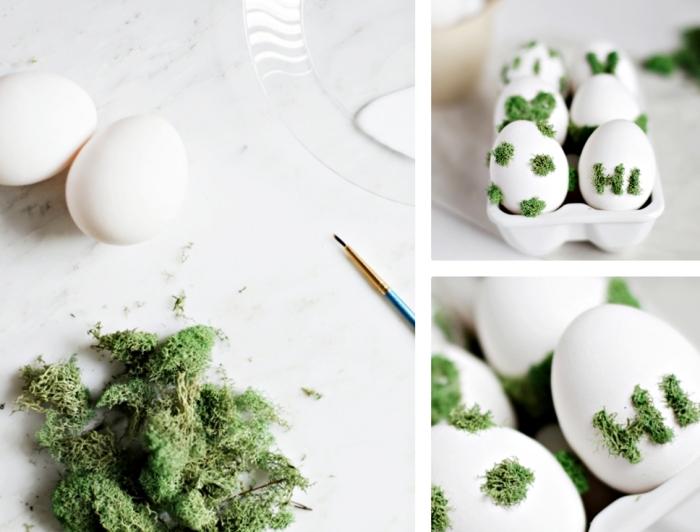 comment décorer les oeufs de coquille blanche avec mousse verte en utilisant colle et pinceau fine, arranger les oeufs dans un carton blanc