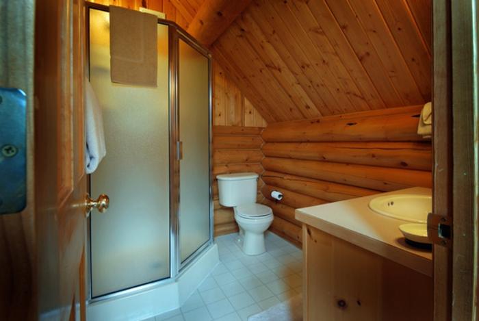 petite salle de bain cosy, parement mural en bois, porte d'entrée gagne d'espace