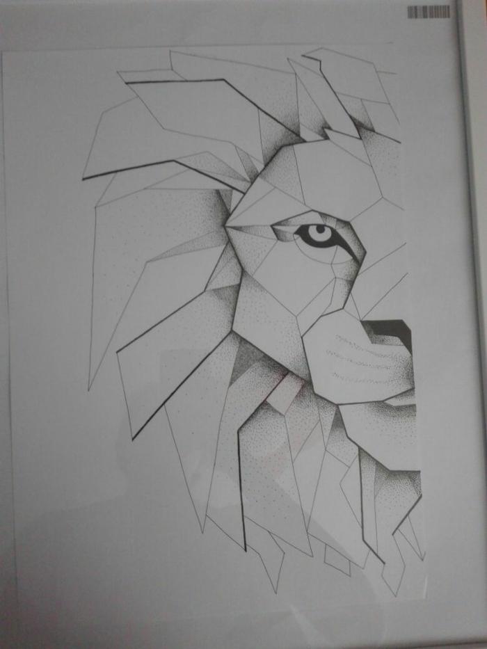 Papiers crayons dessin mathématique image dessin beau lion
