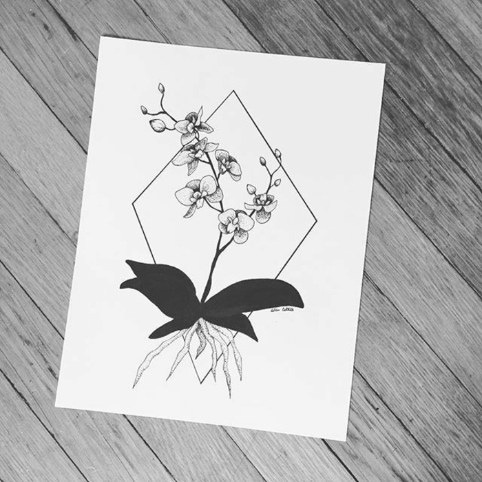 Symbole geometrie le dessin geometrique lignes orchidée