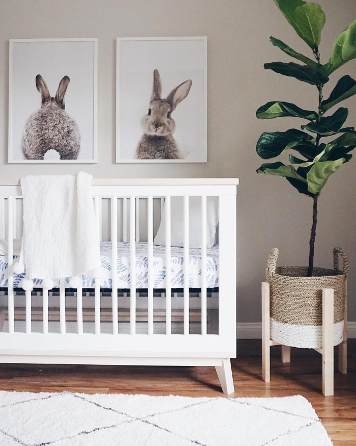 photos de lapin beige dans cadres blancs accrochés sur mur beige, deco chambre fille ou garçon avec plante verte et tapis blanc