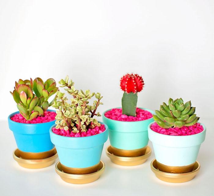 pot de fleur en terre cuite décoré de peinture bleue et fond et sous coupe en or avec des cactus et succulents à l intérieur, activité créative jardin