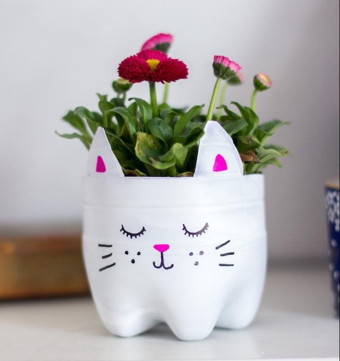 que faire avec des bouteilles en plastique, bouteille découpé en forme de tete de chat avec dessin et fleurs plantées à l intérieur, activité manuelle facile et rapide