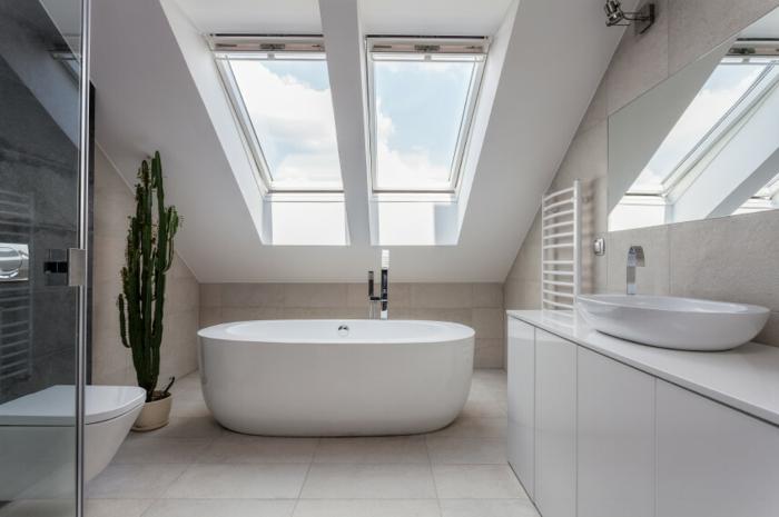 grande fenêtre au plafond, baignoire ovale, toilettes suspendus, cactus et miroir