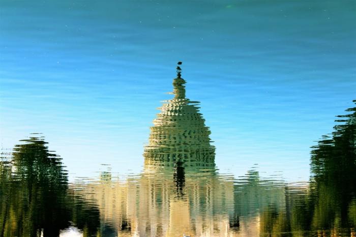 la Maison blanche, Washington avec son image dans l'eau, avec des images d'arbres et le bleu du ciel, oiseau perché sur le toit de la Maison blanche
