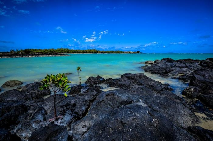 fond ecran paysage, iles paradisiaques, paysage paradisiaque, île Maurice, Océan pacifique, eaux transparentes bleues, ciel bleu
