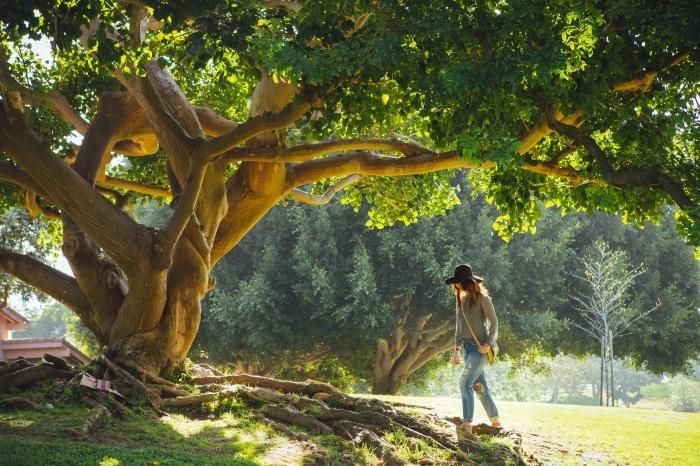 fond d écran jolie pour ordinateur, jeune fille qui se balade en plein air au-dessus d'un arbre ancien à feuilles vertes