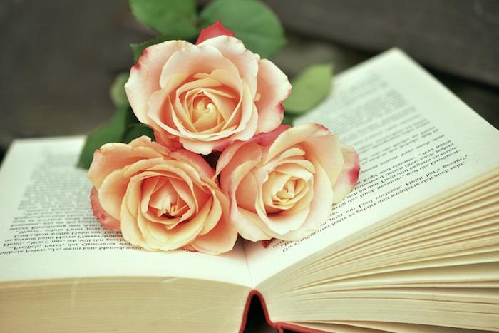 Décoration de bureau image de fleur fond d écran jolie roses sur livre