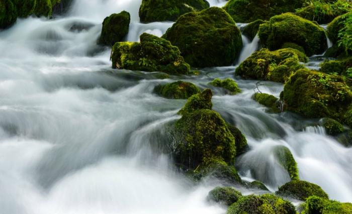 eau en tourbillons, lieu paradisiaque, paysage paradisiaque, pierres et rochers couvertes de vert, détails des cascades d'eau dans une jungle