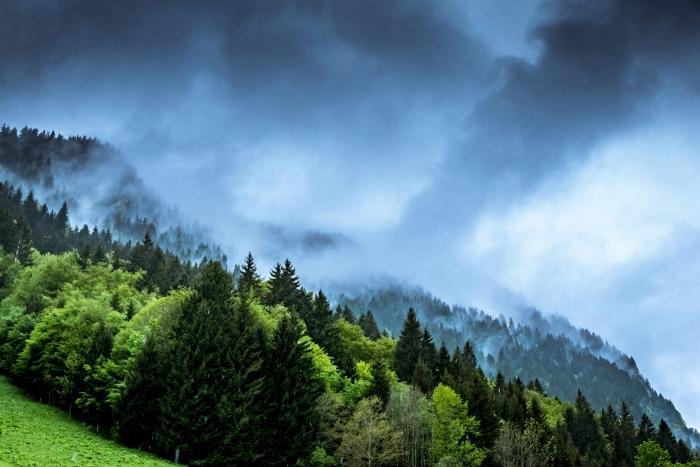 wallpaper fond d écran de la nature, photo de brouillard et nuages grises au dessus des montagnes et des forets à arbres conifères