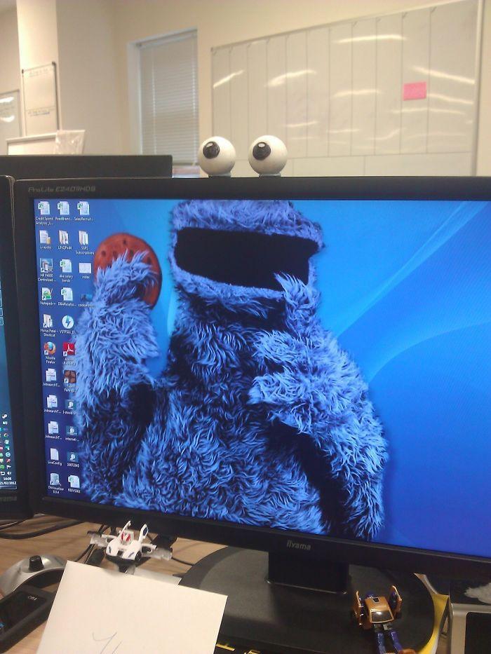 Fond ecran drole fond d écran sympa fond d écran comique chouette cookie monstre