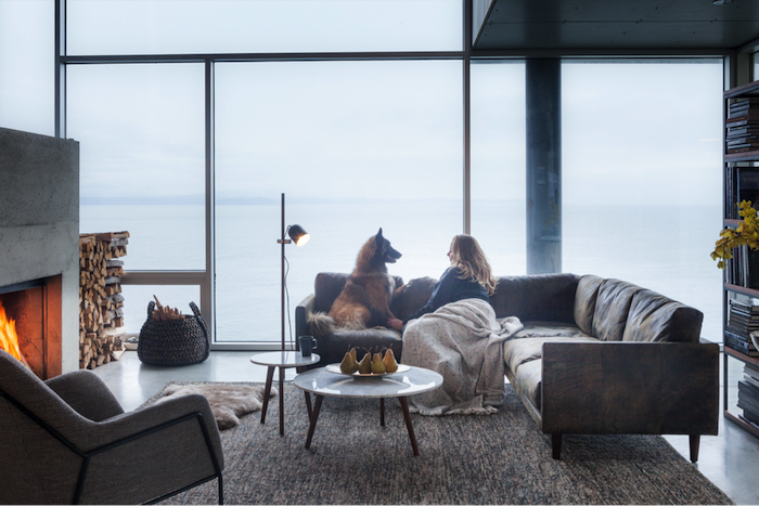 Jolie déco nordique salon scandinave deco scandinave salon hygge chien et femme sur le canapé scandinave déco hygge
