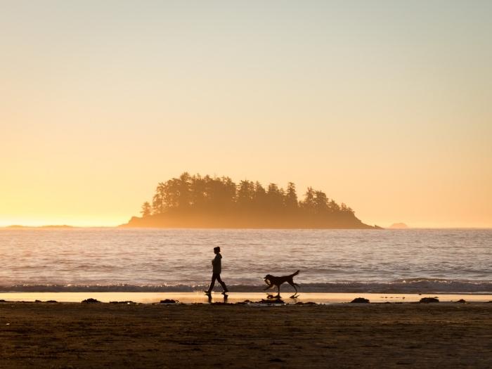 image au lever de soleil, fond d écran hd au bord d'un lac avec femme courante et chien, paysage ile et eau au lever du soleil