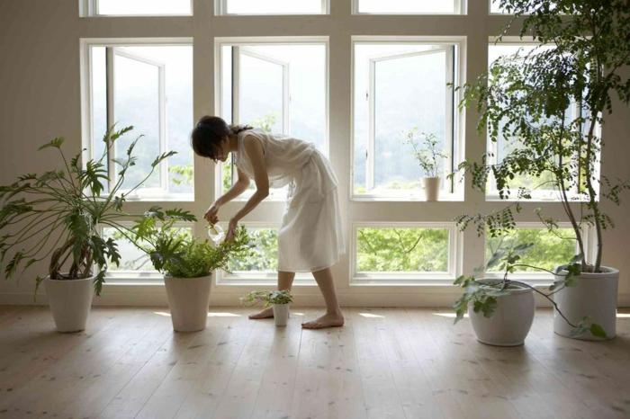 décoration feng shui, parquet en couleur sable, grandes fenêtres en cadres blancs, pots blancs avec des plantes vertes