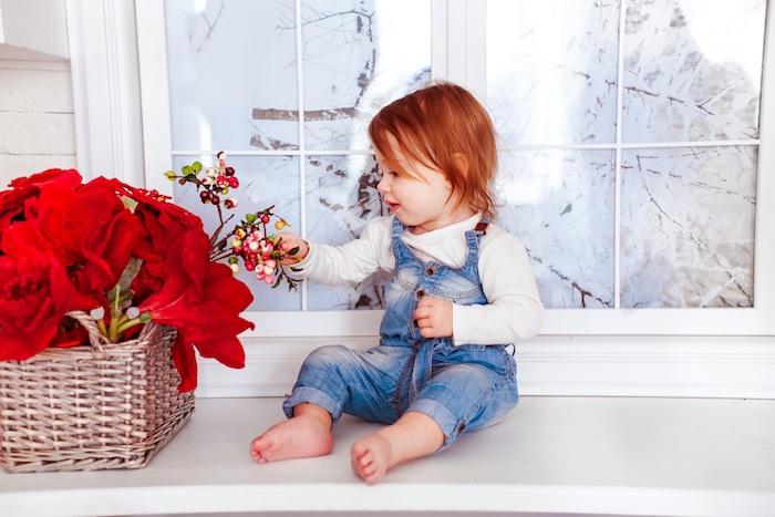 Des images des fleurs fond ecran fleur fond d'écran jolie rouges fleurs